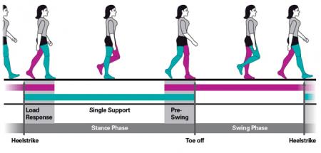 gait-analysis-chart